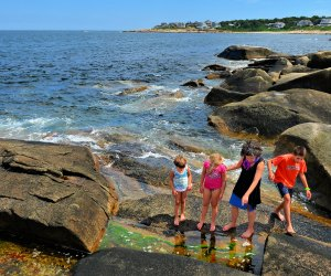 Cool tide pools at Halibut Point State Park. Photo by August Muench/Flickr/CC BY 2.0