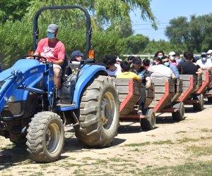 Socially distanced hayrides run all day at Harbes Family Farm. Photo courtesy of the farm
