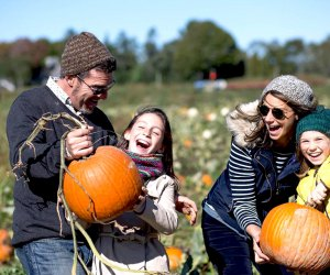 It's  all about family fun at Harbes Family Farm.