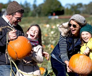 Head to Harbes Family Farm for a day of pumpkin picking and fall fun.