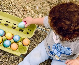 Kids age 8 under can join hunt Easter eggs at Harvest Moon Farm. Photo courtesy of the farm