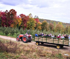 Enjoy apple picking and tractor rides at Harvest Moon Farm