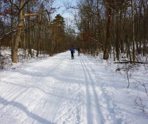 High Point offers 15 miles of cross-country trails