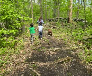 Let your kids loose to run free on the hiking trails right here in NYC. Photo by Sara M.