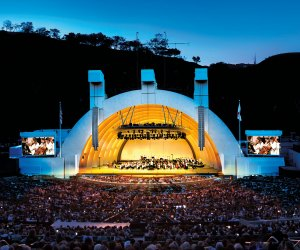Hollywood Bowl, we missed you! Photo courtesy of the Los Angeles Philharmonic Association
