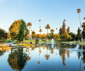 This is a pretty enought place to spend a loooooong time exploring. Photo courtesy of Hollywood Forever