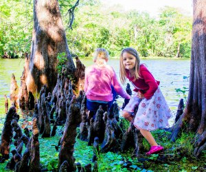 Admission is free to Hontoon Island State Park, where kids can enjoy the great outdoors.