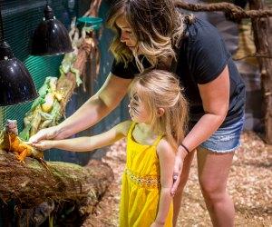 Hands-on animal fun at the upcoming Houston Aquarium and Animal Adventure.