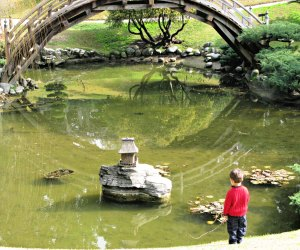 The Japanese Garden at the Huntington Museum can be explored for hours.