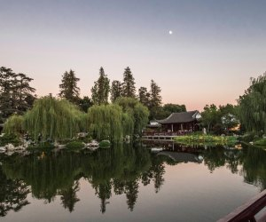 Best Mother's Day Brunches in Los Angeles: Eat at the Huntington