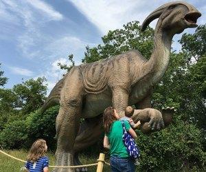 Field Station Dinosaurs