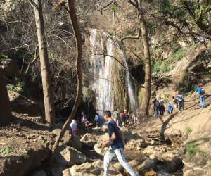 Waterfall Hikes Every LA Family Should Know: Escondido Falls