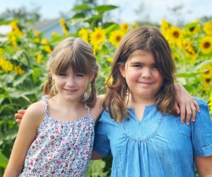 Pick sunflowers, tulips, and more flowers at Boston-area farms! Photo by Ally Noel