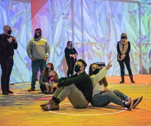 Immersive Van Gogh exhibit Hollywood activity is larger than life
