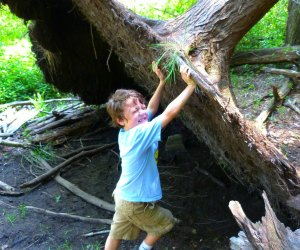 Spring Family Day Trips That Boston Kids Will Love: Ipswich River Sanctuary