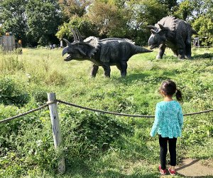 Step back in time at Field Station: Dinosaurs. Photo by Janet Bloom