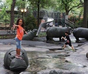 Get up close to the namesake hippos at Hippo Playground