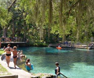 Swim at the freshwater Juniper Springs in Silver Springs, Florida. US Forest Service photo by Susan Blake