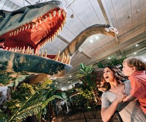 Travel back to the age of the dinosaurs at Jurassic Quest. Photo courtesy of Jurassic Quest