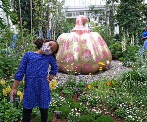 See Starry Pumpkin on display in the Enid A. Haupt Conservatory at the NYBG during Yayoi Kusama's