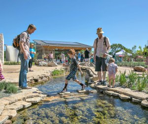 The 4.5-acre Luci and Ian Family Garden at the Lady Bird Johnson Wildflower Center was developed for families. Photo by Brian Berzer