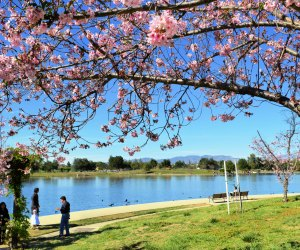 The Best Parks in LA Where Kids Can Run and Play: Lake Balboa Park