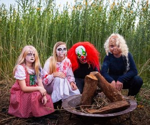 """Visit the haunted maze to experience the tale of """"Catherine's Escape,"""" about a girl who disappeared a century ago. Photo courtesy of Lake Catherine Blueberries"""