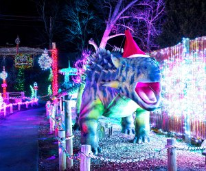 Be enchanted by lights (and dinos!) at Lake Compounce. Photo courtesy of the attraction