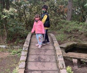 Lasdon Park has kid-friendly hiking trails