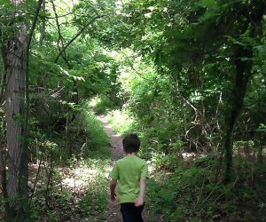 There are 12 miles of hiking trails in La Tourette Park