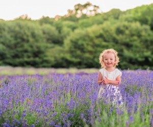 Photo courtesy of Lavender Pond Farm