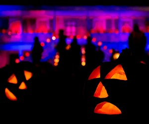Great Jack O Lantern Blaze Tickets Craigslist