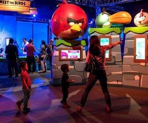 The Liberty Science Center features an awesome series of rotating kids' exhibits, including Angry Birds Universe, up through April 19, 2020. Photo courtesy of the museum