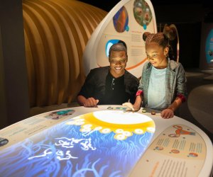 California Science Center has a new exhibit: Life! Beginnings. Photo by Jamie Pham
