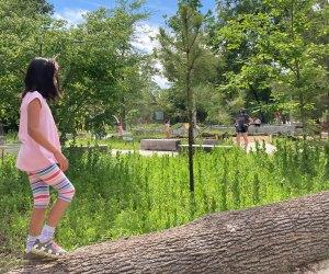 Houston Arboretum playground lumber yard climbing structure