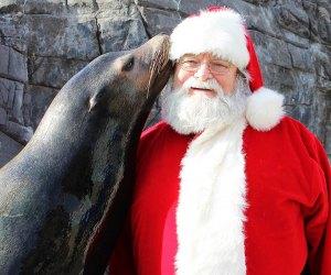 See Santa and friends at the Long Island Aquarium. Photo courtesy of the Aquarium