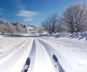 Cross-country skiing on Long Island makes for a perfect, crowd-free winter outing.