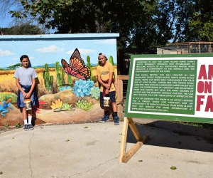 Learn about Art of the Farm