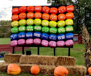 A rainbow pumpkin flag greets visitors at the entrance to The Great Jack O'Lantern Blaze on Long Island