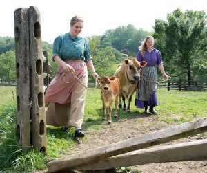 Visit the happy, free-range happy animals at Historic Longstreet Farm.