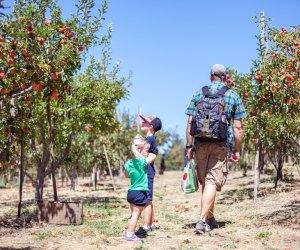 Photo of Los Rios Ranchos by Elizabeth Bean/www.burbs2abroad.com
