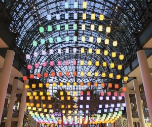 Brighten up the holidays with the annual Luminaries tradition in the Winter Garden. Photo courtesy of BFPL.