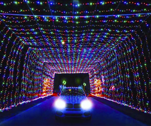 Drive through the enchanting tunnel of lights at The Magic of Lights in Wallingford, Connecticut. Photo courtesy of the Magic of Lights