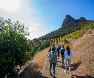 Things To Do on Mother's Day in LA: Wine Hikes