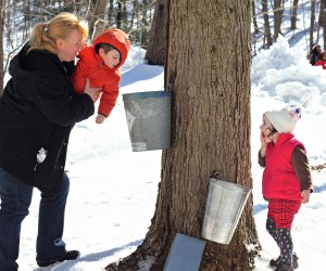 It's maple sugaring season: How sweet it is. Photo courtesy of Philly Parks & Rec