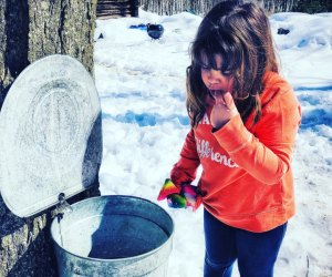 Get a taste of fresh maple syrup. Photo by Ally Noel
