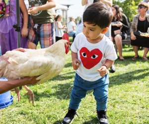 Greenwood Gardens hosts many family-friendly events throughout the year. Photo courtesy of Greenwood Gardens
