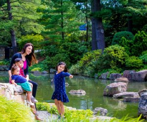 Celebrate Japanese culture at the Children's Day Exhibition. Photo courtesy of Shofuso Japanese Cultural Center