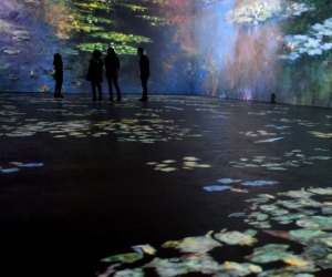 Every Immersive Art Experiences for Kids in LA: Monet