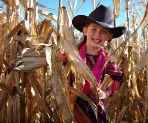 Enjoy a corn maze and more at the Montpelier Farms fall festival. Photo courtesy the farm